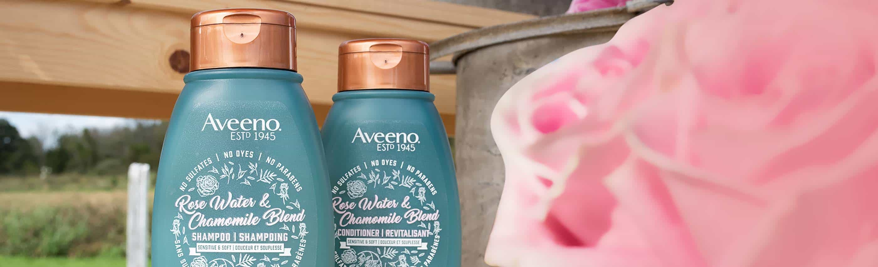 deux flacons du shampoing et du revitalisant aveeno à l'eau de rose et la camomille derrière des roses roses