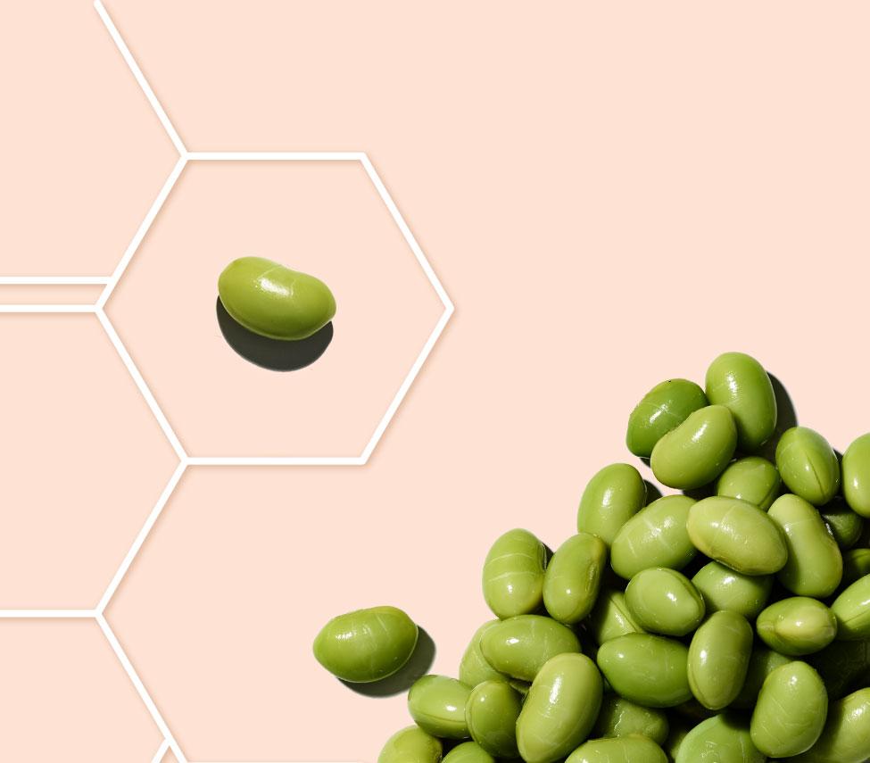 fève de soja dans une grille de molécule sur  fond pêche