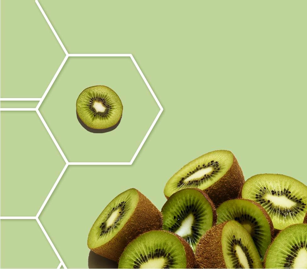 moitié de kiwi dans une grille de molécule sur fond vert