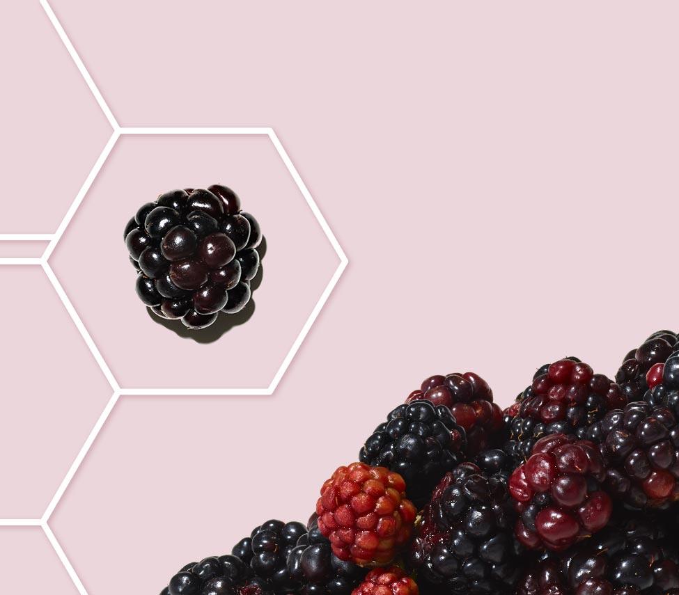 mûre dans une grille de molécule sur fond rose