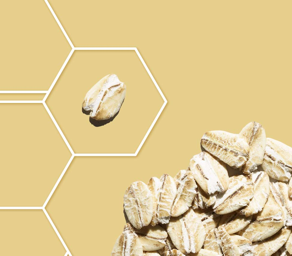 flocon d'avoine dans une grille de molécule sur fond jaune